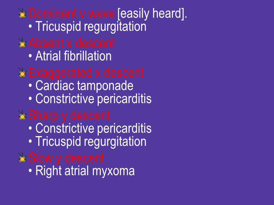 Dominant v wave [easily heard]. • Tricuspid regurgitation